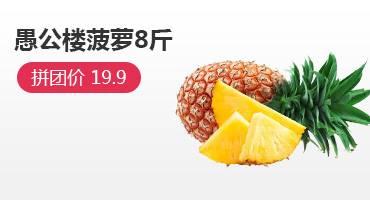 湛江徐聞愚公樓8斤菠蘿拼團