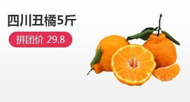 四川丑橘春見耙耙柑丑柑精品中果5斤
