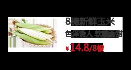 8穗新鮮玉米